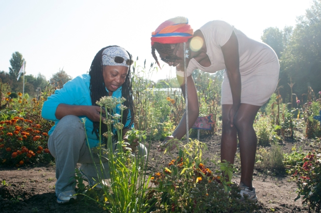 Kopie van tuinieren-3- bloeigroei
